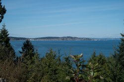 p_Town-from-KP-beach-over-the-trees.jpg